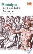 « Des Cannibales » suivi de « Des Coches » (Bac 2020)