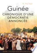Guinée, chronique d'une démocratie annoncée