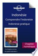 Indonésie 5ed - Comprendre l'Indonésie et Indonésie pratique