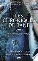 The Mortal Instruments, Les chroniques de Bane, tome 8 : Le grand amour de Magnus